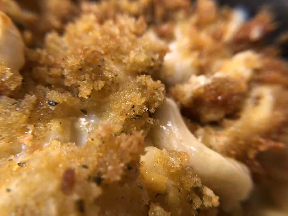 Close up of brown rice macaroni and cheese topped with breadcrumb