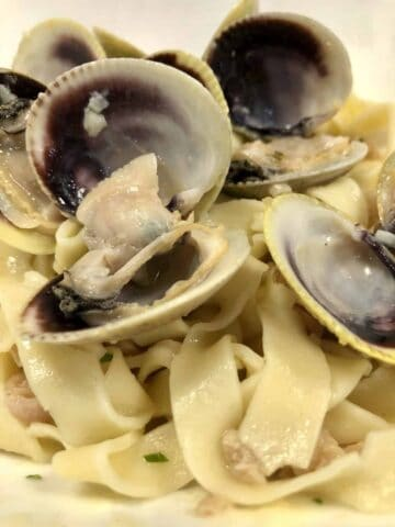 linguine with clams in white wine sauce